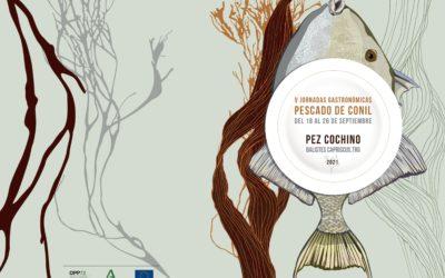 V Jornadas Gastronómicas Pescado de Conil